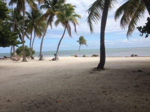 A beautiful beach in Islamadora Key.